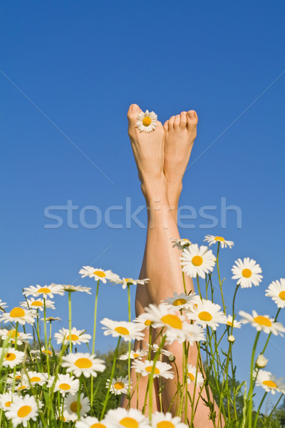 Happy sunny legs with flowers Stock photo © ilona75