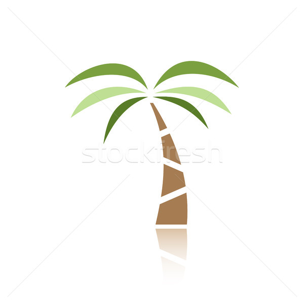 Palm tree icon on a white background Stock photo © Imaagio