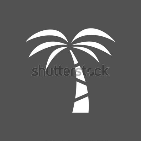 Palmera icono oscuro árbol paisaje mar Foto stock © Imaagio