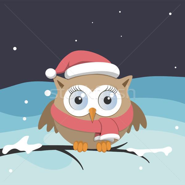 женщины совы Дед Мороз Hat филиала Рождества Сток-фото © Imaagio