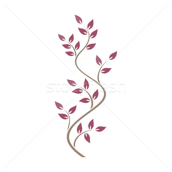 Natural ornamentation with pink ivy on white background Stock photo © Imaagio
