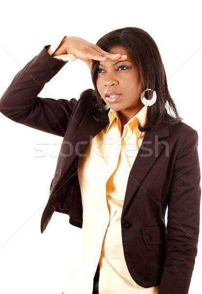 Iş kadını arama görüntü arama başarı kadın Stok fotoğraf © Imabase