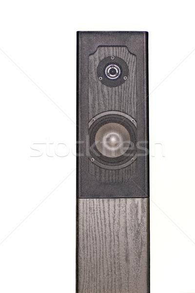 Konuşmacı muhteşem yüksek sesle konser kulüp siyah Stok fotoğraf © Imagecom