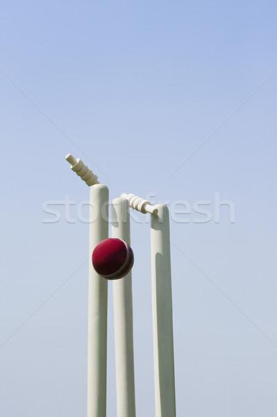 Cricket bal hemel hout fotografie bol Stockfoto © imagedb