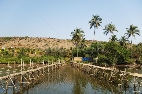 Kettő fából készült hidak folyó Goa India Stock fotó © imagedb