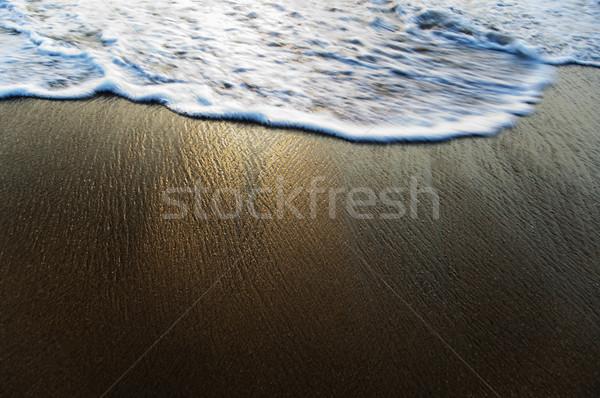 Magasról fotózva kilátás szörf tengerpart Goa India Stock fotó © imagedb