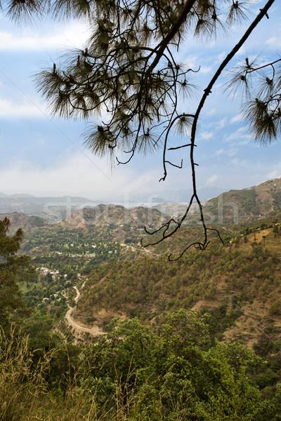 High angle view of mountains, Shimla, Himachal Pradesh, India Stock photo © imagedb