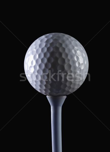 Közelkép golflabda golf sportok fehér játék Stock fotó © imagedb