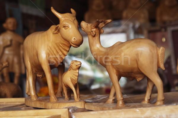 Animaux marché new delhi Inde détail photographie Photo stock © imagedb