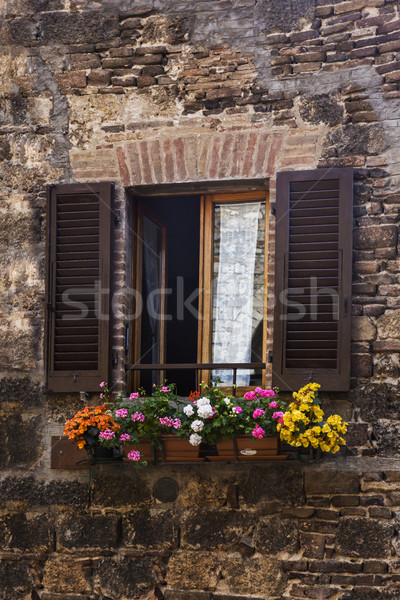 Window boxes on the window of a building Stock photo © imagedb