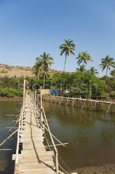Fából készült híd folyó Goa India víz Stock fotó © imagedb