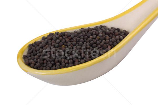 Közelkép fekete mustár magok kanál fotózás Stock fotó © imagedb