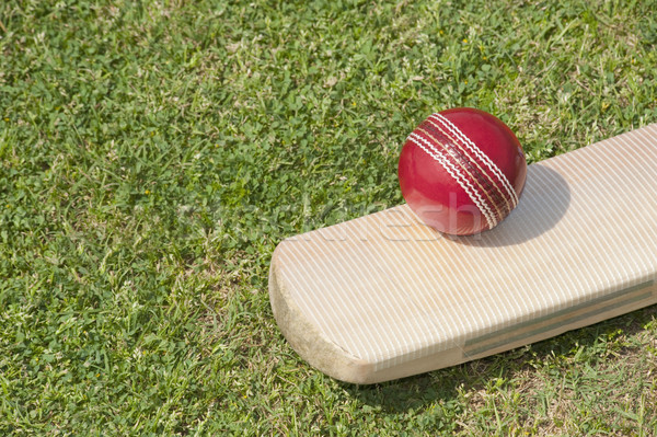 Kriket top bat alan fotoğrafçılık küre Stok fotoğraf © imagedb