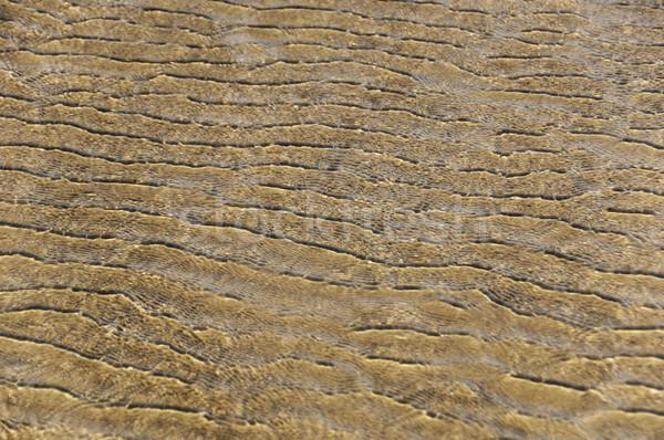 Minta homok Goa India tengerpart víz Stock fotó © imagedb