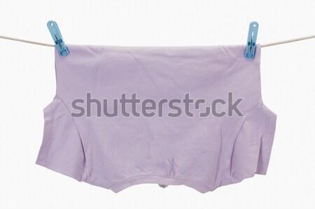 Közelkép rózsaszín fotózás bársony fehér háttér stúdiófelvétel Stock fotó © imagedb