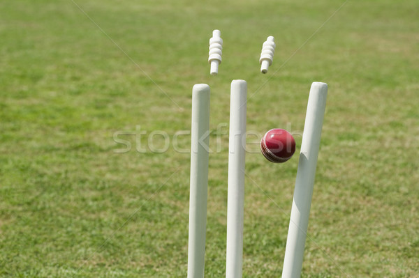 Kriket top çim ahşap fotoğrafçılık küre Stok fotoğraf © imagedb