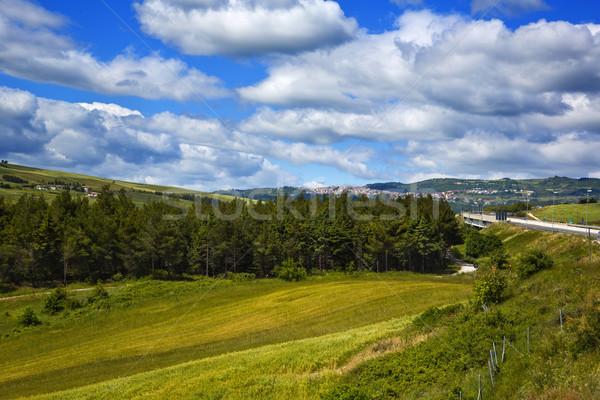 Chmury krajobraz dziedzinie zielone gospodarstwa Europie Zdjęcia stock © imagedb