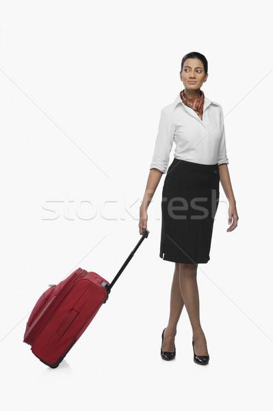 Hava hostes bagaj kadın genç Stok fotoğraf © imagedb
