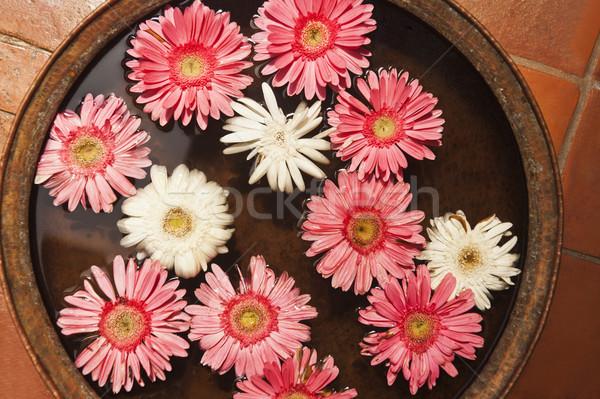 цветы чаши Непал цветок воды природы Сток-фото © imagedb
