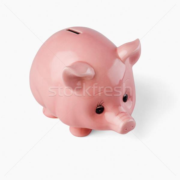 Közelkép persely üzlet biztonság pénzügy állat Stock fotó © imagedb