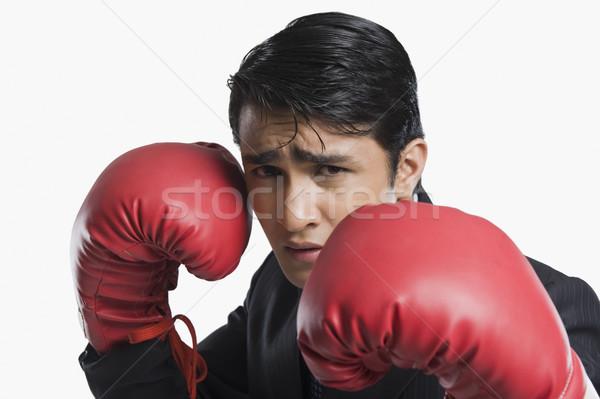 üzletember visel boxkesztyűk üzlet férfi portré Stock fotó © imagedb