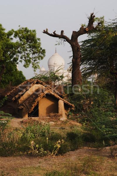 泥 霊廟 タージマハル ツリー 歴史 写真 ストックフォト © imagedb