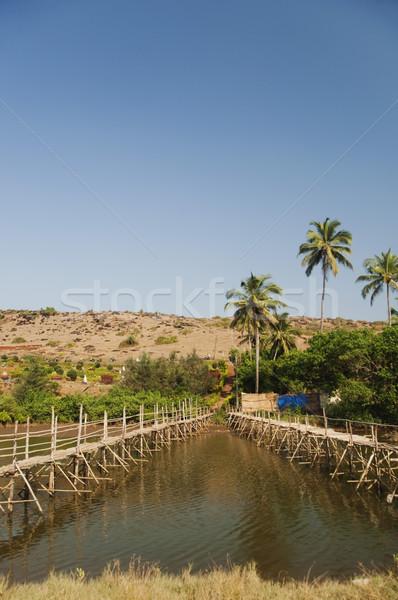 два мостами реке Гоа Индия Сток-фото © imagedb