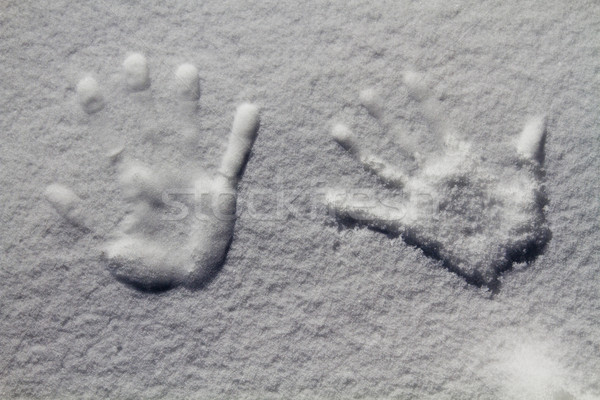 Trace of the hand on the snow, Kashmir, Jammu And Kashmir, India Stock photo © imagedb