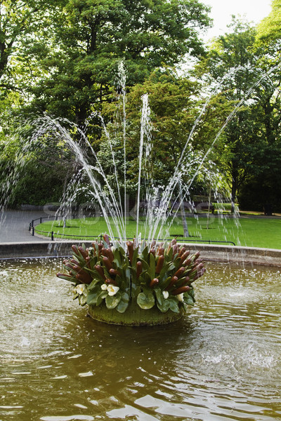 Szökőkút park zöld Dublin köztársaság Írország Stock fotó © imagedb