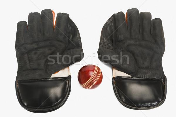 крикет мяча пару спорт безопасности Сток-фото © imagedb