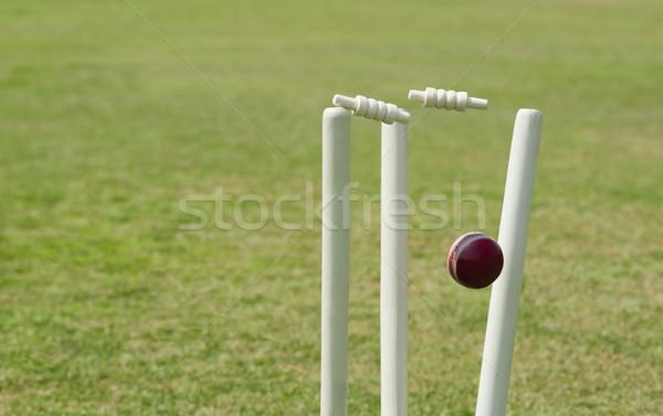 Foto stock: Cricket · pelota · hierba · madera · fotografía · esfera