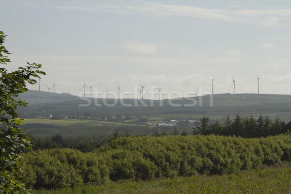 Szélturbinák domb köztársaság Írország égbolt fa Stock fotó © imagedb