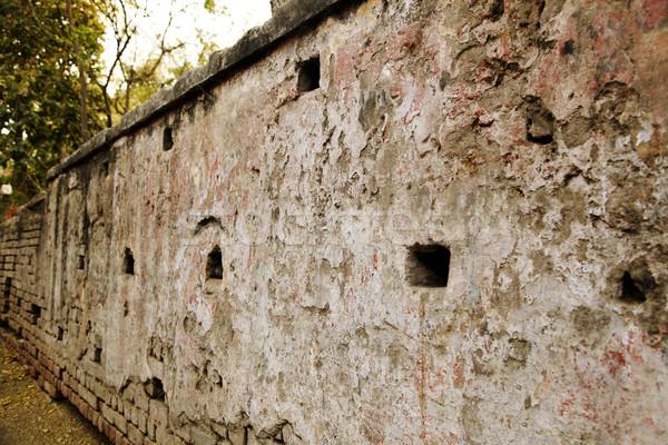 Details of a wall, Agra, Uttar Pradesh, India Stock photo © imagedb