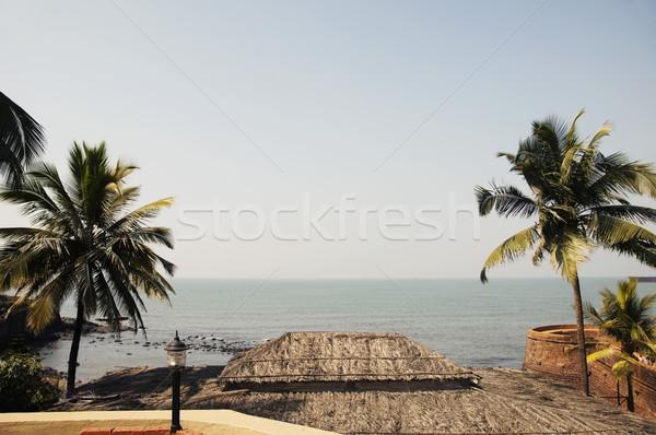 Сток-фото: пальмами · пляж · Гоа · Индия · воды · фотографии