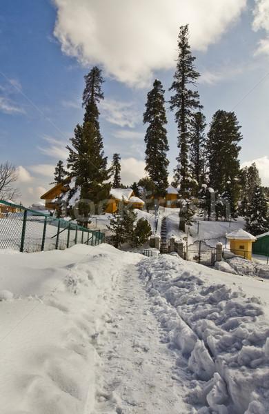 Hó fedett turistaövezet India fa természet Stock fotó © imagedb