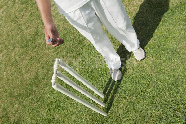 View cricket giocatore soldi erba Foto d'archivio © imagedb