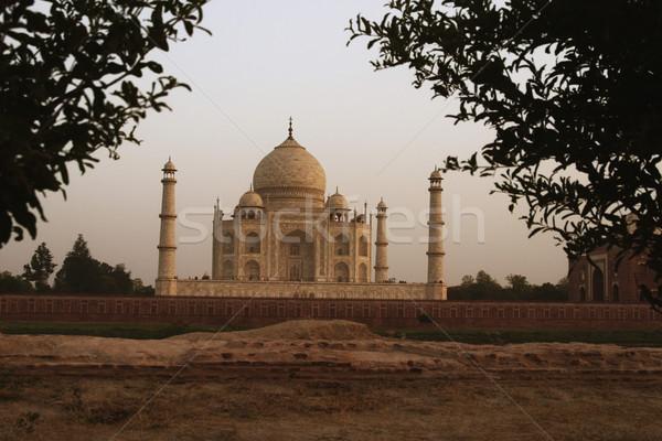 Facciata mausoleo Taj Mahal albero architettura bianco Foto d'archivio © imagedb