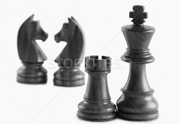 белый весело Knight царя фотографии Сток-фото © imagedb