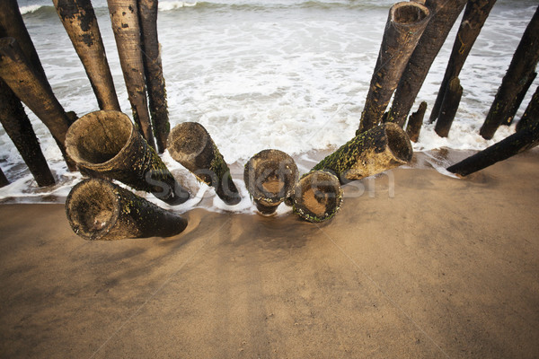 Wooden posts on the beach, Pondicherry, India Stock photo © imagedb