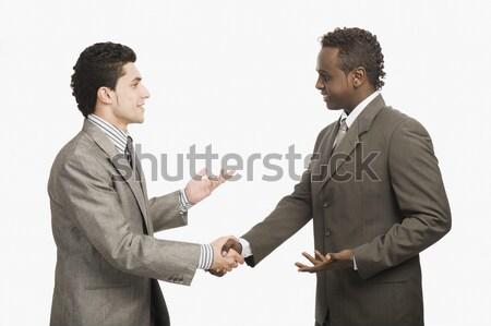 Dwa biznesmenów drżenie rąk działalności biznesmen handshake Zdjęcia stock © imagedb