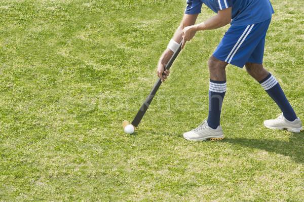 Alan çim adam spor hokey Stok fotoğraf © imagedb