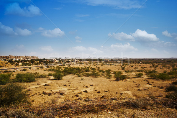 Bush growing at arid landscape with town in background, Jaisalme Stock photo © imagedb