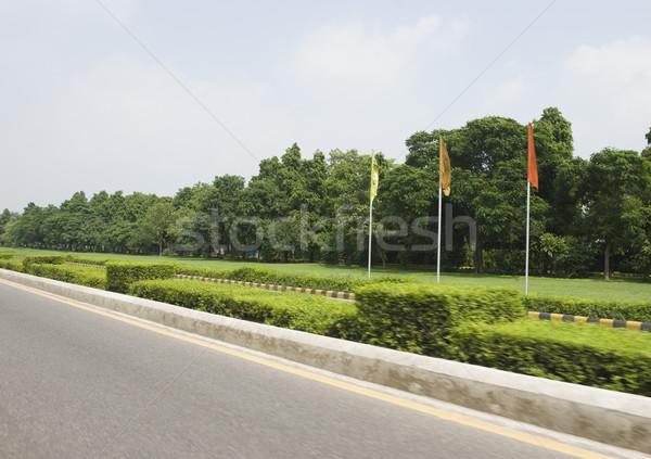 フラグ パス ニューデリー インド 緑 ストックフォト © imagedb
