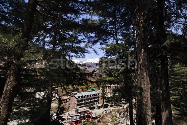 High angle view of a town, Manali, Himachal Pradesh, India Stock photo © imagedb