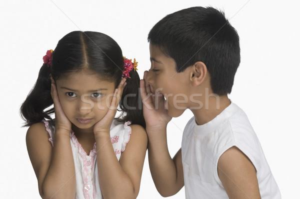 Lány fülek fivér kiált gyerekek gyerekek Stock fotó © imagedb