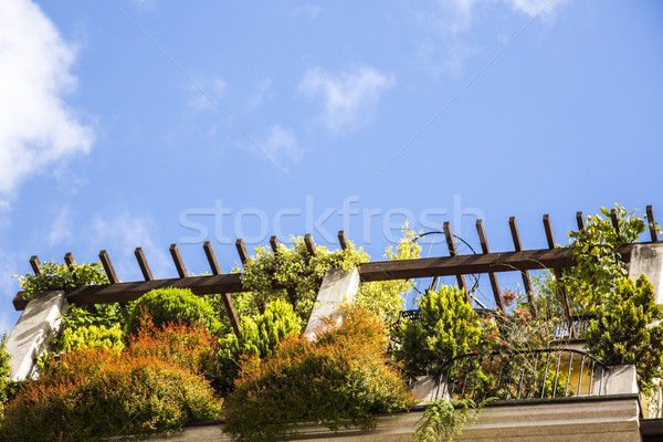 Plants on the terrace of a building Stock photo © imagedb