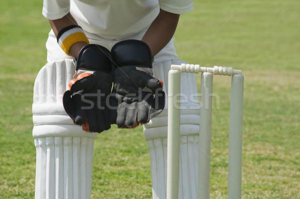 Permanente achter hout sport veiligheid veiligheid Stockfoto © imagedb