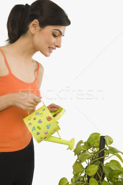 Kadın bitki sulama yaprak gülen Stok fotoğraf © imagedb