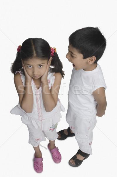 Dziewczyna kłosie brat mówić dzieci dzieci Zdjęcia stock © imagedb