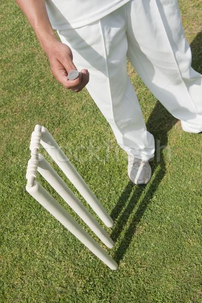 Cricket speler geld gras Stockfoto © imagedb